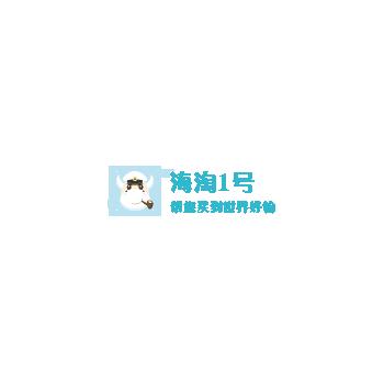 海淘1号服务介绍